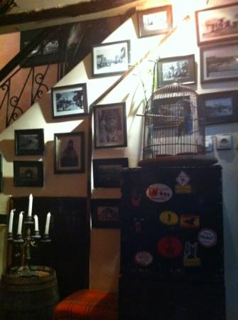 Les 3 Portes: two birds who live downstairs. great photos on wall and the choice of background music is fantas