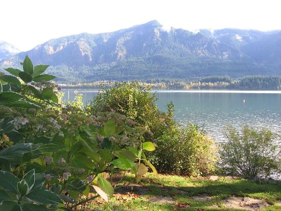 Columbia Gorge Riverside Lodge: View of Columbia River