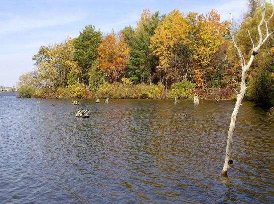 Traverse Area Recreation and Transportation Trails : Boardman Lake Trail