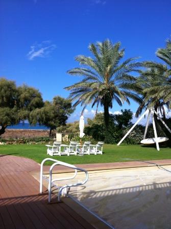 Moshav Liman Estate: Shave Tzion garden