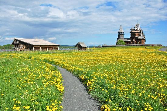 Kizhi State Open-Air Museum of History, Architecture and Ethnography : Perched on a hill of dandelions the magestic church overlooks Lake Onega