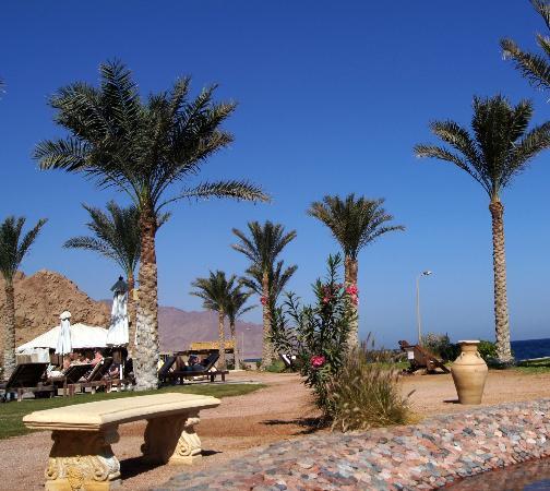 Dahab Paradise: вид из кресла