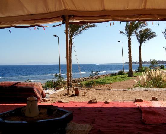 Dahab Paradise: вид из чудного шатра, где здорово коротать вечера за костром и ароматным чаем