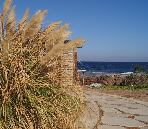 Dahab Paradise: ворота к морю