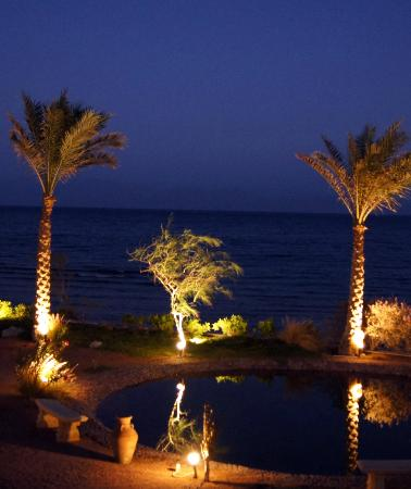 Dahab Paradise: милая вечерняя подсветка