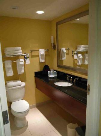 Wyndham Gettysburg: Bathroom