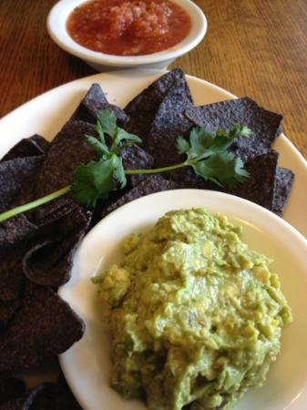 McFoster's Natural Kind Cafe: guacamole and salsa