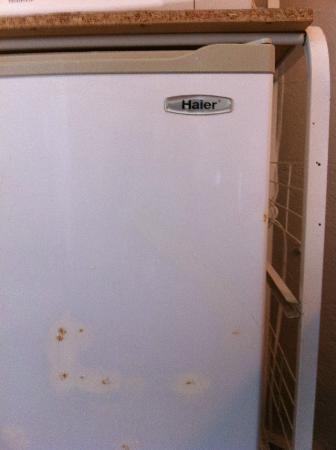 Villa Verde Inn: Refrigerador dentro de la habitación, olía mal.