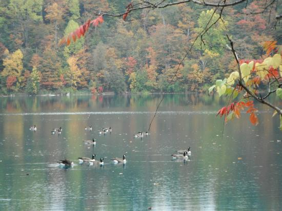 Green Lakes State Park: Ready for the fall