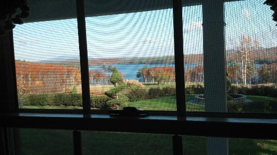 The Maguire House B&B: View from Wisteria Room