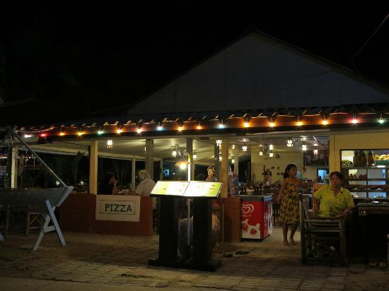 Coconut garden: An evening in Oct 2012