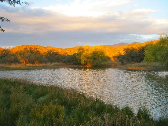 "Sunglow Ranch - Arizona Guest Ranch and Resort: You can see why the owners named this magical place ""Sunglow!"""