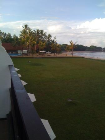 The Surf Hotel: Swimming Pool View From Room