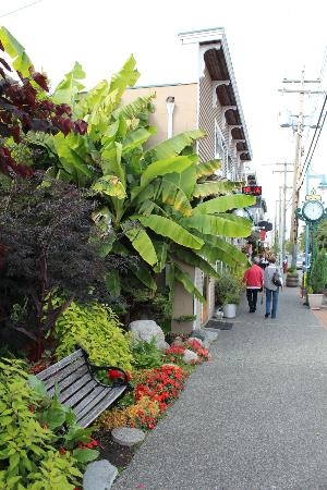 Steveston Heritage Fishing Village: Nice stroll in the town.