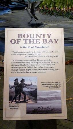 写真San Francisco Maritime Museum/Aquatic Park Bathhouse Building枚