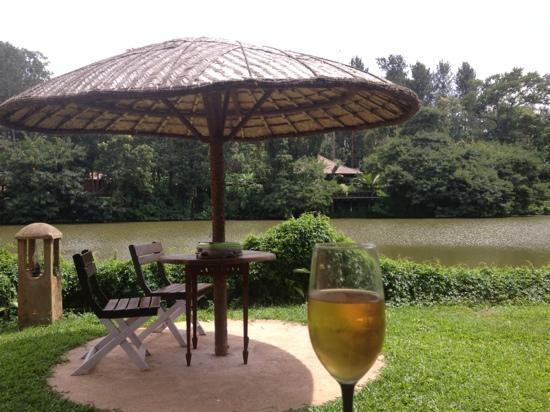 Evolve Back, Coorg: the view from our private pool villa