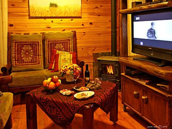 Rosh-Pinat Noy: Seating beside the fireplace in teh wooden cabin