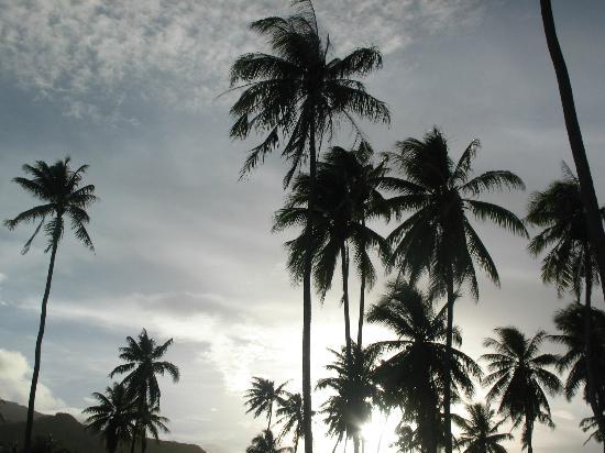 Sofitel Moorea Ia Ora Beach Resort: SPIAGGIA