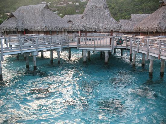 Sofitel Moorea Ia Ora Beach Resort: overwater