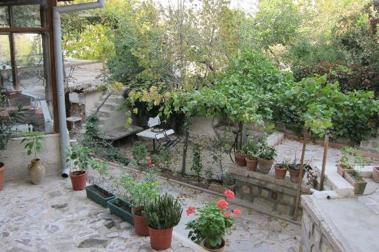 Yasin's Place Backpackers Cave Hotel: small garden