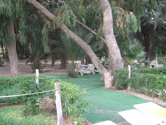 Marhaba Salem: pool area