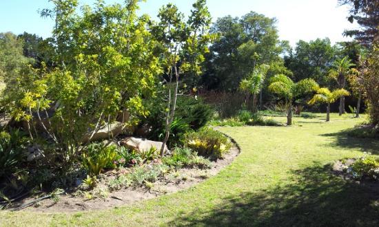 Hotel Plettenberg Bay: The garden