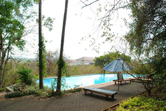 Udayana Kingfisher Eco Lodge: The Pool