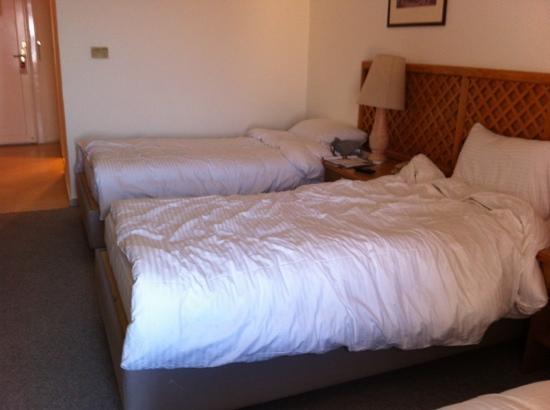 Petra Panorama Hotel: room