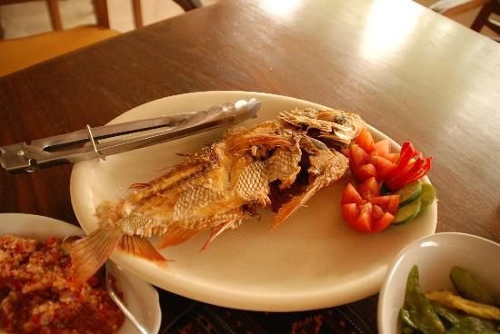 Udayana Kingfisher Eco Lodge: Delicious snapper meal