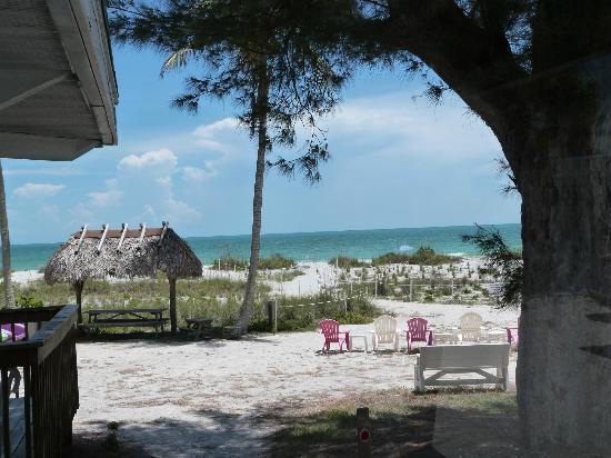 """Mitchell's Sandcastles: Vue depuis la terrasse de notre cottage """"sea grape"""""""