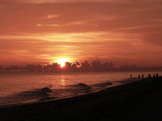 Mitchell's Sandcastles: Coucher de soleil, plage de Sanibel