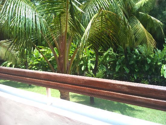 Ramada Bintang Bali Resort: Garden view