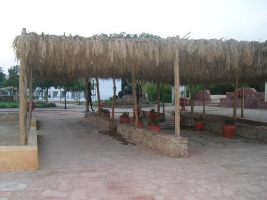 Dreams Beach Resort : hotel grounds
