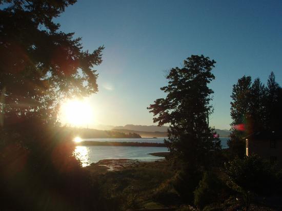 Birdsnest B&B: 裏庭から朝日を望む
