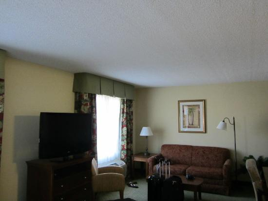 Hampton Inn & Suites Fort Myers - Colonial Blvd: room 425