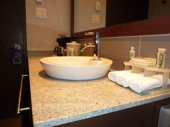 Holiday Inn Express Quebec City (Sainte-Foy): restroom