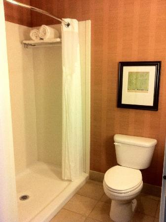 Holiday Inn Hotel & Suites Denver Airport: Bathroom/Shower