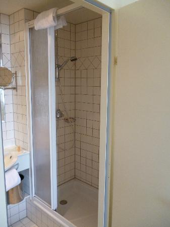 Hotel Regina: Shower room