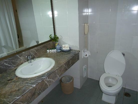 เช็คอินน์ รีเจนซี่ พาร์ค: Bathroom
