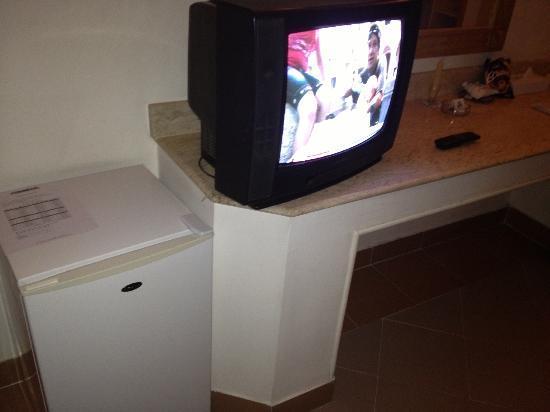 Camel Dive Club & Hotel: TV and fridge