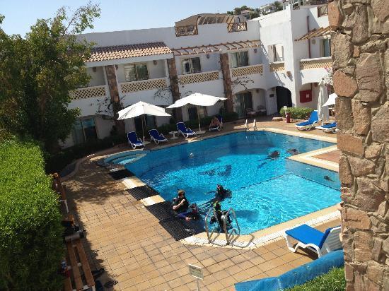 Camel Dive Club & Hotel 사진