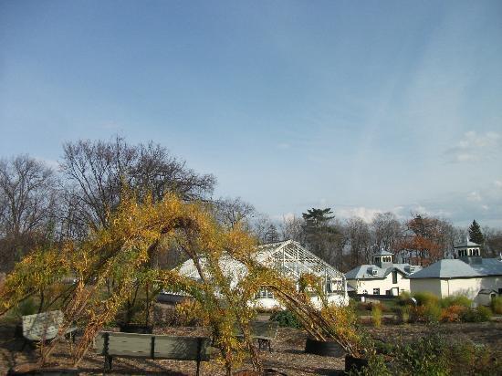 Tonnelle naturelle dans les jardins du potager - Photo de ...