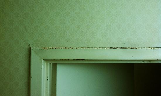 Travelodge Parsippany: rust above bathroom door