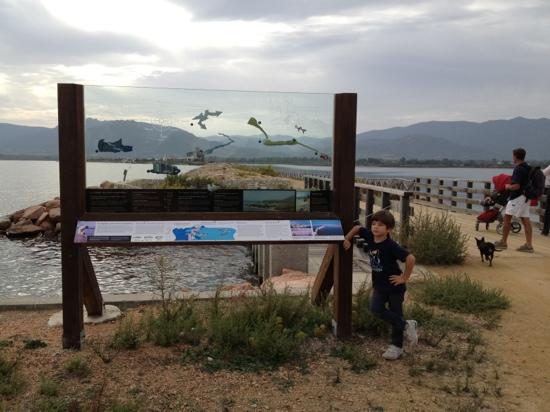 Aquarium Laguna di Nora: laguna di Nora, ingresso. Argine tra mare e laguna, lasciando la terraferma