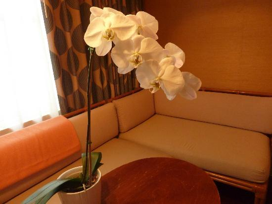 The Raleigh Miami Beach: Orchids and Florence Broadhurst fabric curtains