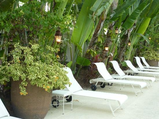 The Raleigh Miami Beach: Loungers round the pool