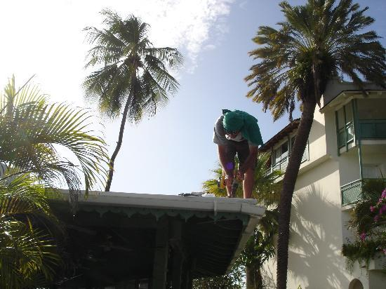 Mango Bay All Inclusive: Roof replacement