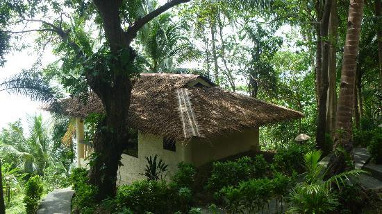 Easy Diving and Beach Resort: Deluxe Bungalow