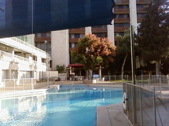 Jerusalem Gardens Hotel & Spa: бассейн