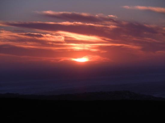 Grootbos Private Nature Reserve : Sunset